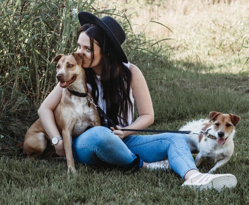 Starh (25), $400, Non-smoker, Have pets, and No children