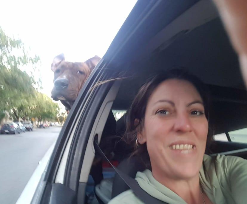 Shai (39), $500, Non-smoker, Have pets, and No children