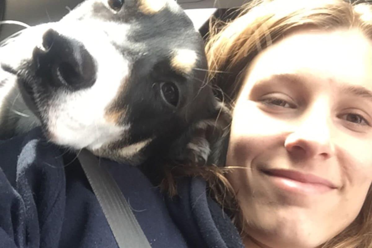 Ellyn (24), $250, Non-smoker, No pets, No children, and LGBT+
