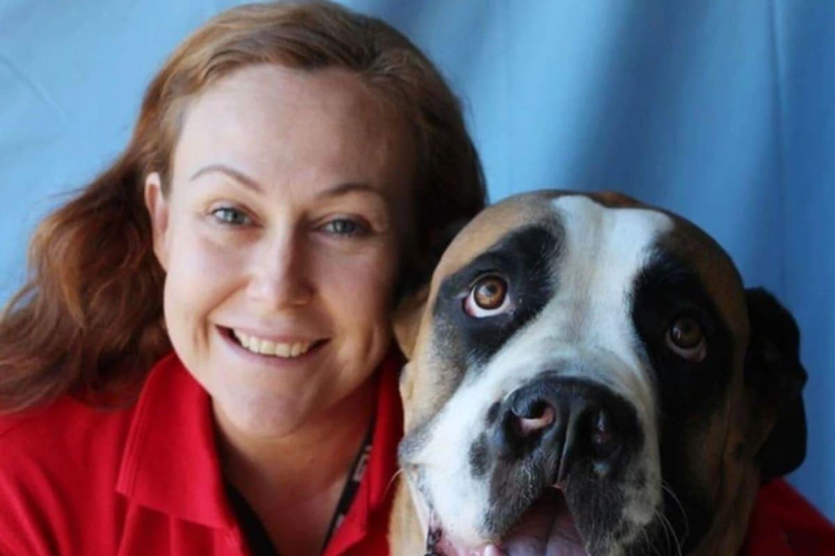 Liz (40), $200, Non-smoker, Have pets, and No children