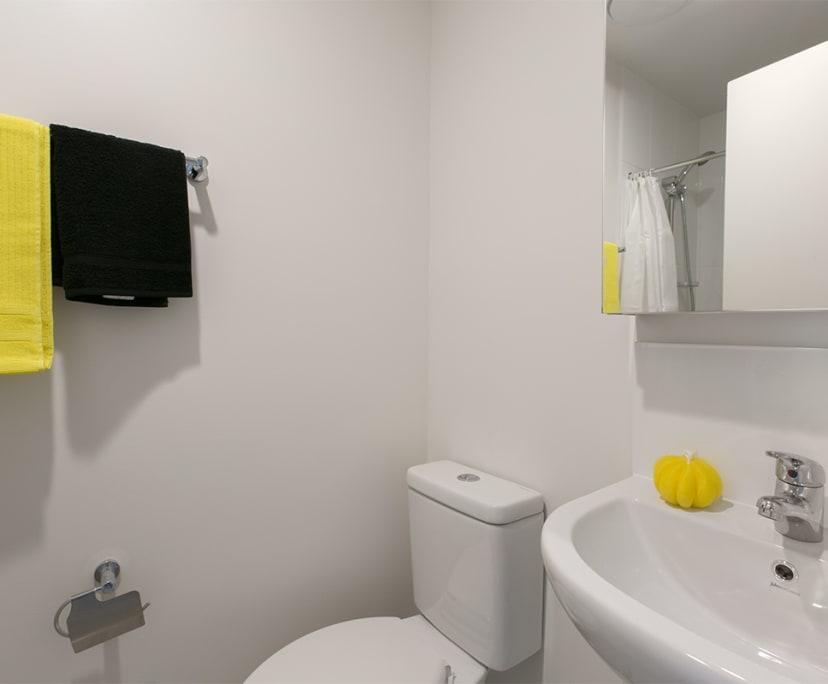 $250, Student-accommodation, 6 bathrooms, Kelvin Grove Road, Kelvin Grove QLD 4059