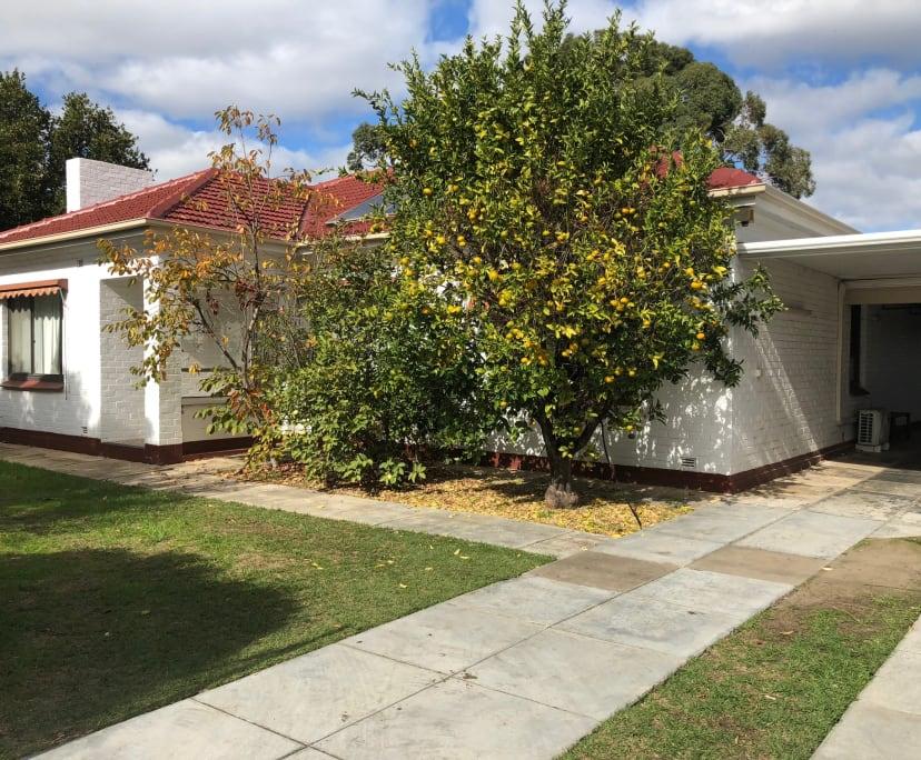 $140, Share-house, 2 rooms, Park Holme SA 5043, Park Holme SA 5043