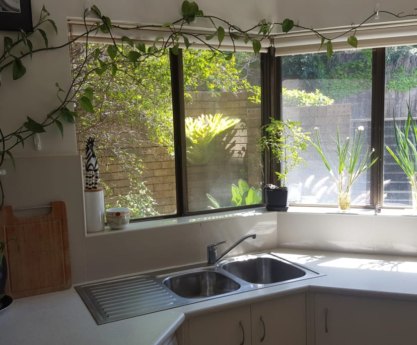 $300, Share-house, 2 bathrooms, Alfred Street North, Neutral Bay NSW 2089