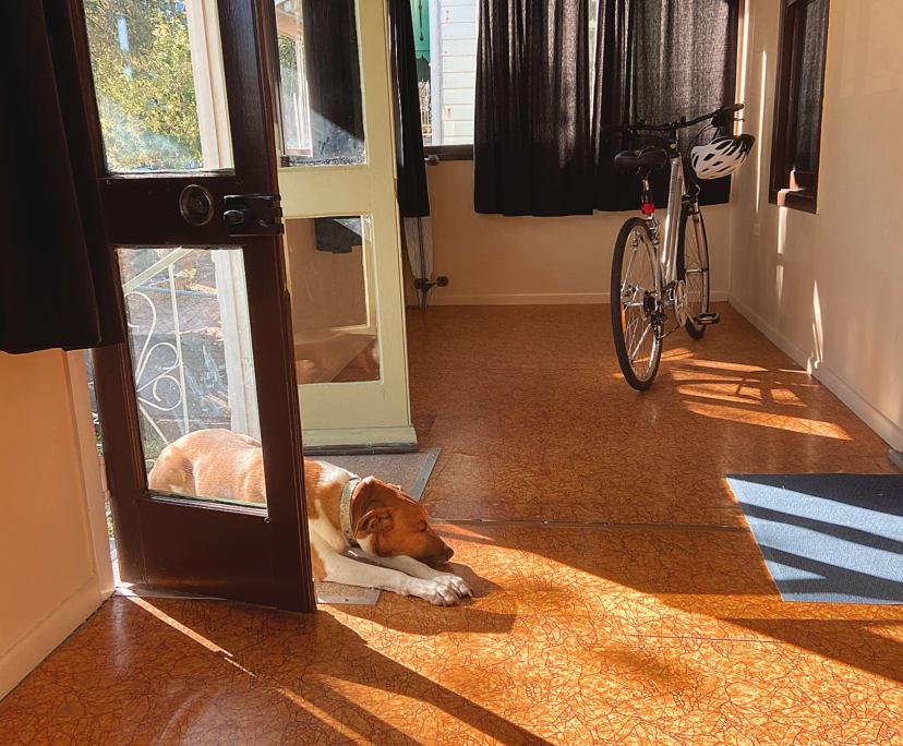 $200, Share-house, 2 bathrooms, Woolloongabba QLD 4102
