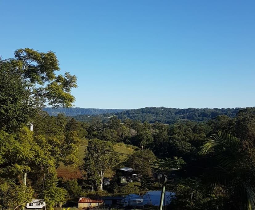$250, Share-house, 2 rooms, Diddillibah Road, Diddillibah QLD 4559, Diddillibah Road, Diddillibah QLD 4559
