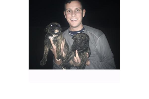 Sam (22), $300, Non-smoker, No pets, and No children