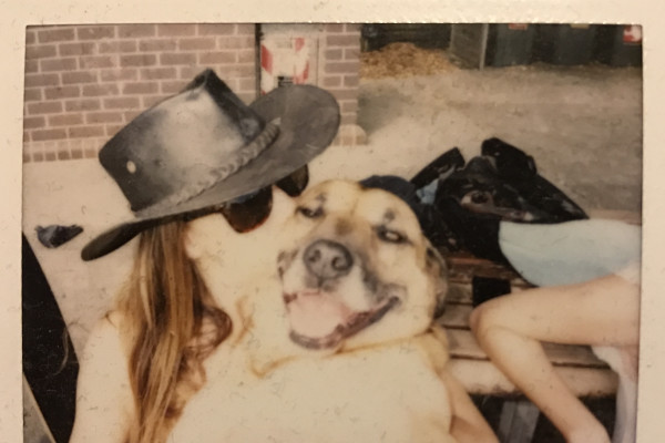 Maya (37), $400, Have pets, Non-smoker, and No children