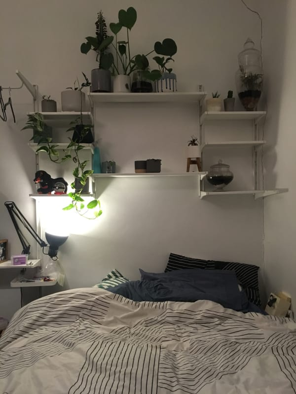 $200, Share-house, 5 bathrooms, Abbotsford Street, West Melbourne VIC 3003