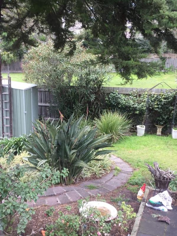 $200, Share-house, 3 bathrooms, Sanderling Crescent, Mornington VIC 3931