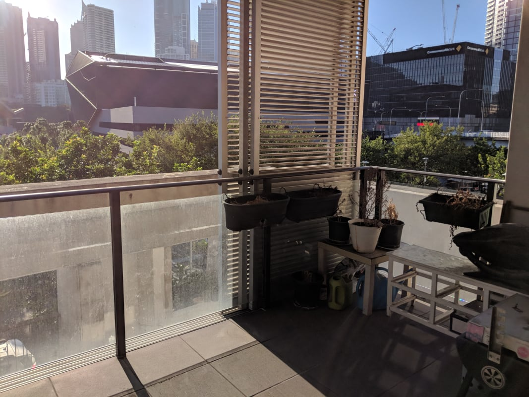 $350, Flatshare, 3 bathrooms, Pyrmont Street, Ultimo NSW 2007