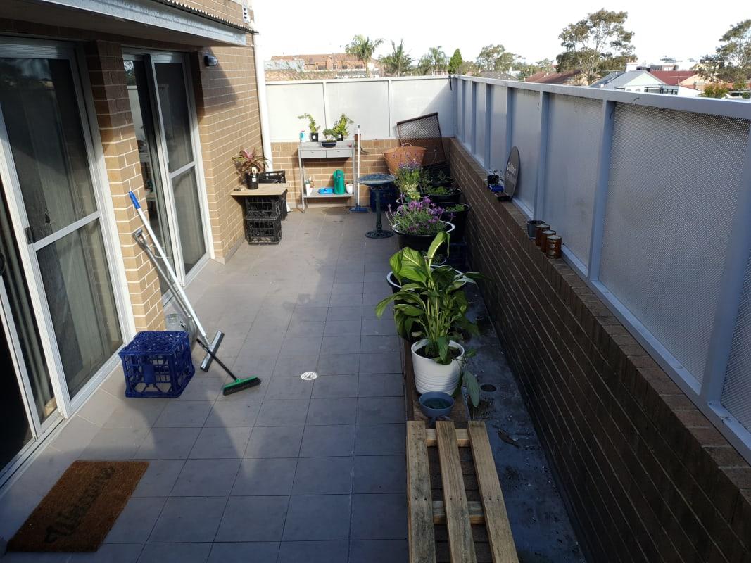 $300, Flatshare, 3 bathrooms, King Street, Newtown NSW 2042