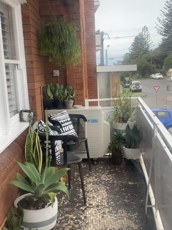 $330, Flatshare, 3 bathrooms, Arden Street, Coogee NSW 2034