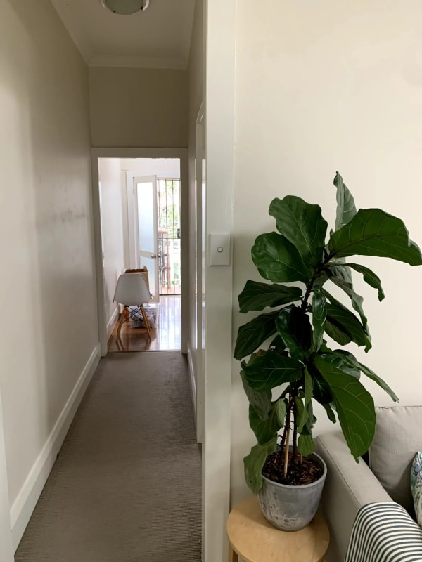 $325, Flatshare, 2 bathrooms, Ramsgate Avenue, Bondi Beach NSW 2026