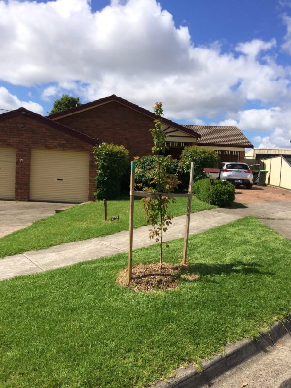 $200, Share-house, 3 bathrooms, Glenloth Court, Epping VIC 3076
