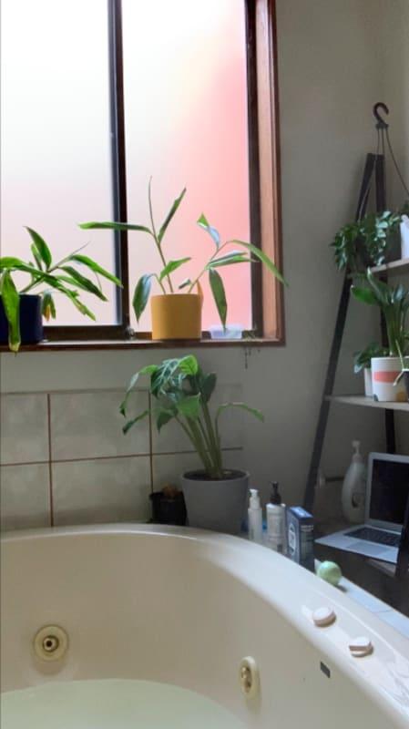 $168, Share-house, 3 bathrooms, Glen Huntly Road, Glen Huntly VIC 3163