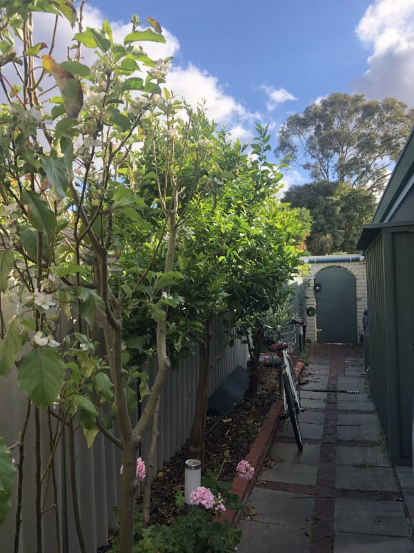 $160, Share-house, 3 bathrooms, O'Connell Street, Hamilton Hill WA 6163