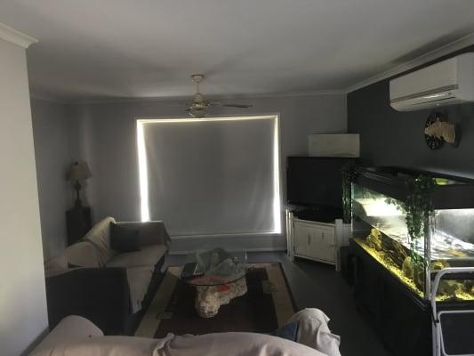 $170, Share-house, 4 bathrooms, Levy Court, Kuluin QLD 4558