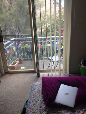 $165, Flatshare, 2 bathrooms, Bourke Street, North Wollongong NSW 2500