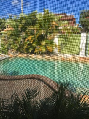 $210, Share-house, 4 bathrooms, Centaur Street, Kippa-Ring QLD 4021