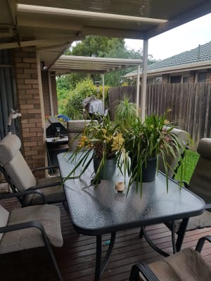 $170, Share-house, 4 bathrooms, Coolomon Close, Wantirna South VIC 3152