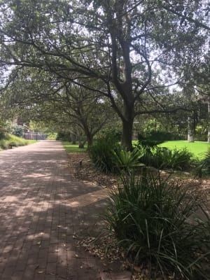 $250, Student-accommodation, 4 bathrooms, Ashcroft Place, Keiraville NSW 2500