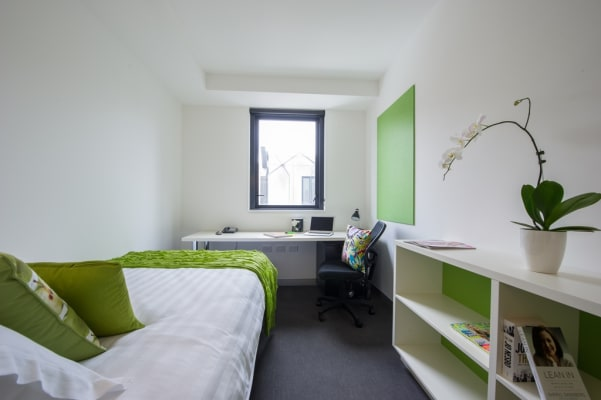 $370, Student-accommodation, 1 bathroom, Kensington Street, Chippendale NSW 2008