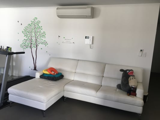 $150, Flatshare, 2 bathrooms, Church Avenue, Mascot NSW 2020