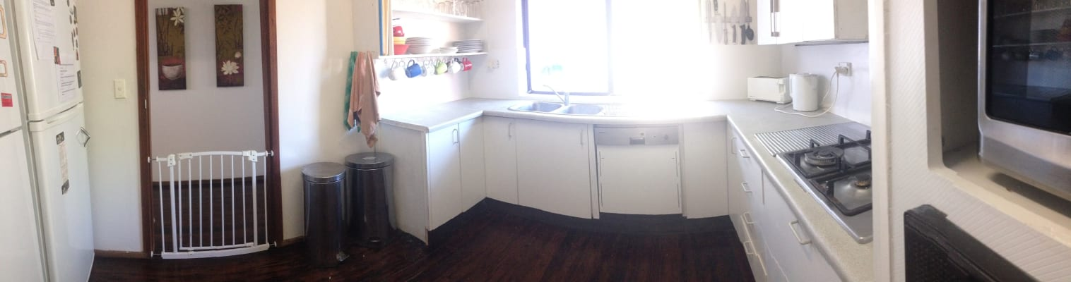 $250-300, Share-house, 2 rooms, Stratford St, Cammeray NSW 2062, Stratford St, Cammeray NSW 2062