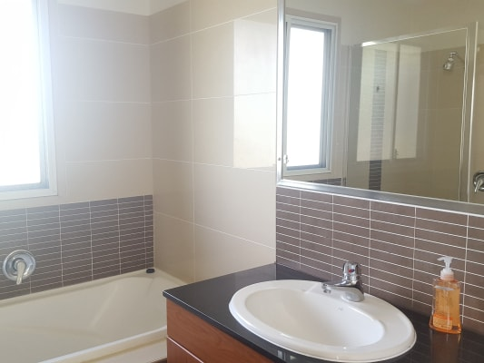 $190, Share-house, 4 bathrooms, Ivanhoe Street, Annerley QLD 4103