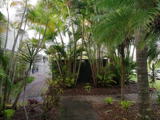 $225, Flatshare, 2 bathrooms, Douglas Street, Sunshine Beach QLD 4567