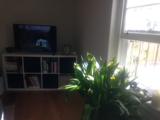 $500, 1-bed, 1 bathroom, Bruce Street, Toorak VIC 3142