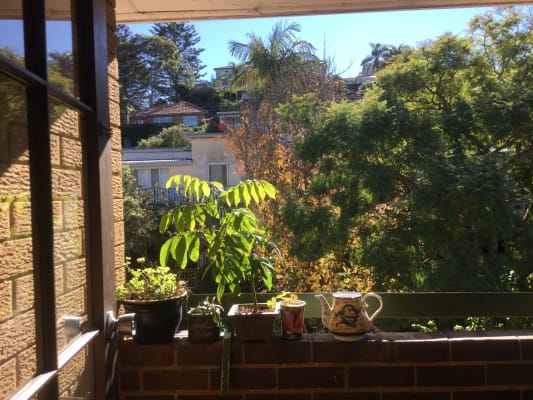 $250, Flatshare, 2 bathrooms, Palomar Pde, Freshwater NSW 2096