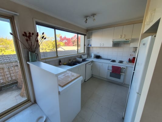 $250, Share-house, 4 bathrooms, Bootle Place, Phillip ACT 2606