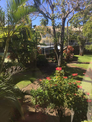 $155, Flatshare, 3 bathrooms, Burleigh Street, Burleigh Heads QLD 4220