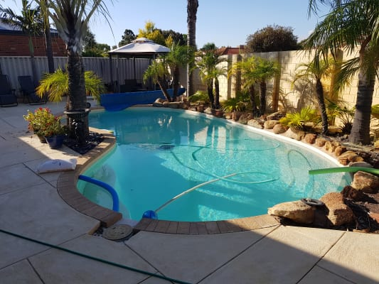 $220, Homestay, 5 bathrooms, Aspera Close, Canning Vale WA 6155