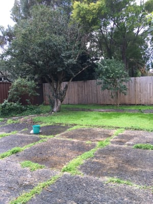 $250-400, Share-house, 2 rooms, Avoca Street, Randwick NSW 2031, Avoca Street, Randwick NSW 2031