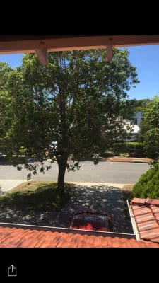 $205, Share-house, 3 bathrooms, Boreham Street, Cottesloe WA 6011