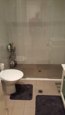 $310, Flatshare, 2 bathrooms, Ross Street, Forest Lodge NSW 2037