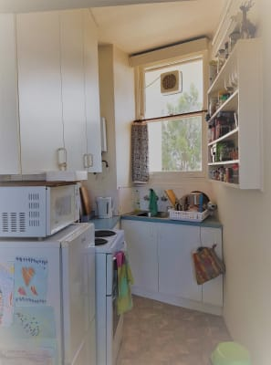 $500, Studio, 1 bathroom, Parkes Street, Kirribilli NSW 2061