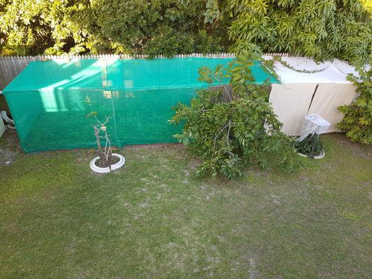$220, Share-house, 4 bathrooms, Ben Lexcen Drive, Sunrise Beach QLD 4567