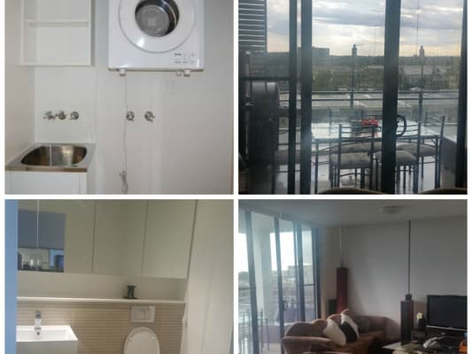 $330, Flatshare, 3 bathrooms, Marine Parade, Wentworth Point NSW 2127