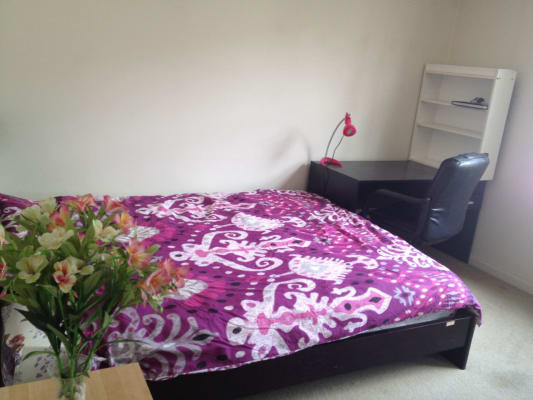 $320, Flatshare, 3 bathrooms, Mountain, Ultimo NSW 2007