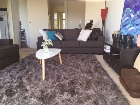 $240, Flatshare, 2 bathrooms, Orrong Road, Armadale VIC 3143