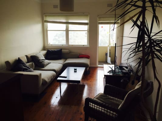 $350, Flatshare, 2 bathrooms, Premier St, Neutral Bay NSW 2089
