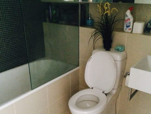 $300, Flatshare, 3 bathrooms, Queens Road, Melbourne VIC 3004