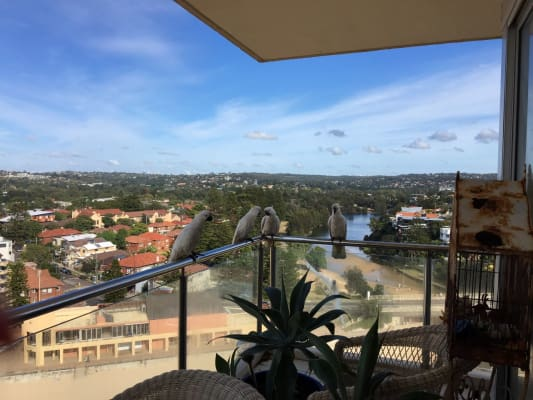 $400, Flatshare, 3 bathrooms, Queenscliff Road, Queenscliff NSW 2096