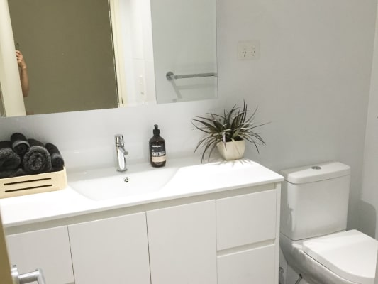 $320, Flatshare, 2 bathrooms, Shackel Avenue, Brookvale NSW 2100