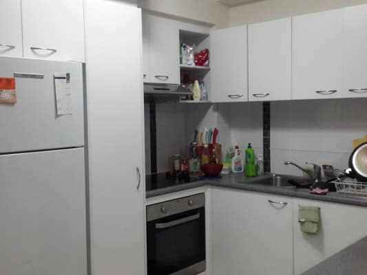 $278, Flatshare, 2 bathrooms, Sir Fred Schonell Drive, Saint Lucia QLD 4067