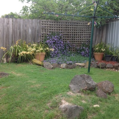 $170, Share-house, 3 bathrooms, Middleborough Road, Box Hill North VIC 3129