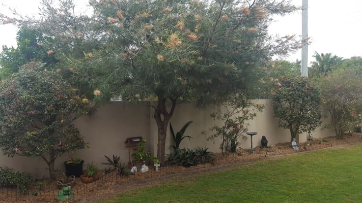 $180, Share-house, 3 bathrooms, Pimpala St, Wurtulla QLD 4575